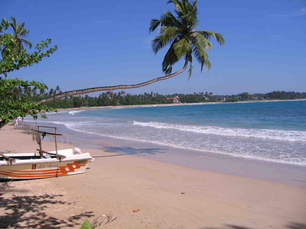 Typical beach on Sri Lanka's southwest coast.  Photo by K. Trethewey.