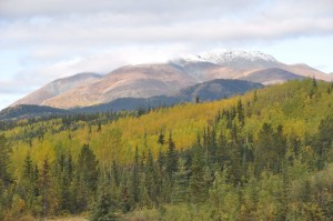 Fall Foliage and Snow on the Peaks (1)