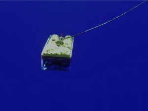 The ROV lost power in deep water, floating dangerously above the mangled ship.