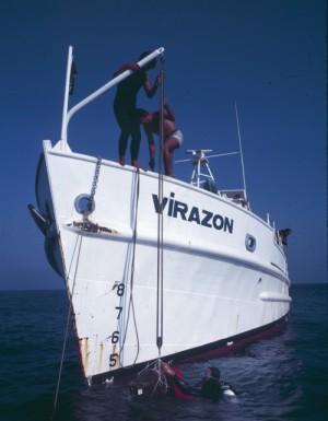 Virazon KW3032