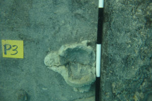 Iron grenade embedded into one of the hull planks