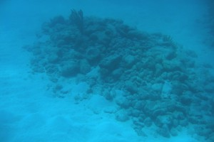 Western Ledge Reef Wreck ballast pile (photo courtesy of the BMM), REF4492