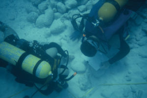 Excavations of the wreck (photo courtesy of the BMM). REF4494