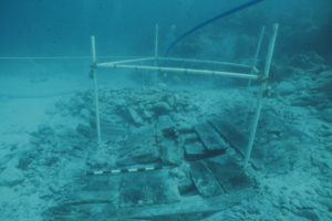 Uncovered timbers of the midship section of the wreck (photo courtesy of the BMM). REF4497