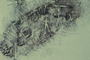 Illustration of the wreck site. REF4620
