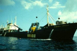 The training ship Corsair (Photo: INA). REF4339