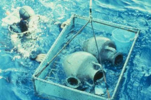 Amphoras being brought to the surface (Photo: INA). REF4344
