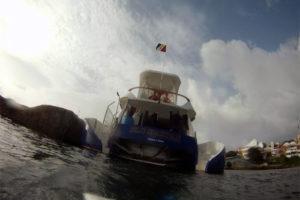 Dive platform R/V Blu Spartan REF5044