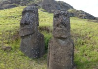 Easter Island Survey