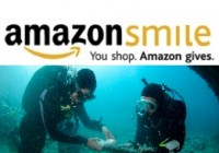 Support INA with Amazon