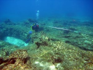 Diver establishing datum points by which the wreck is mapped.