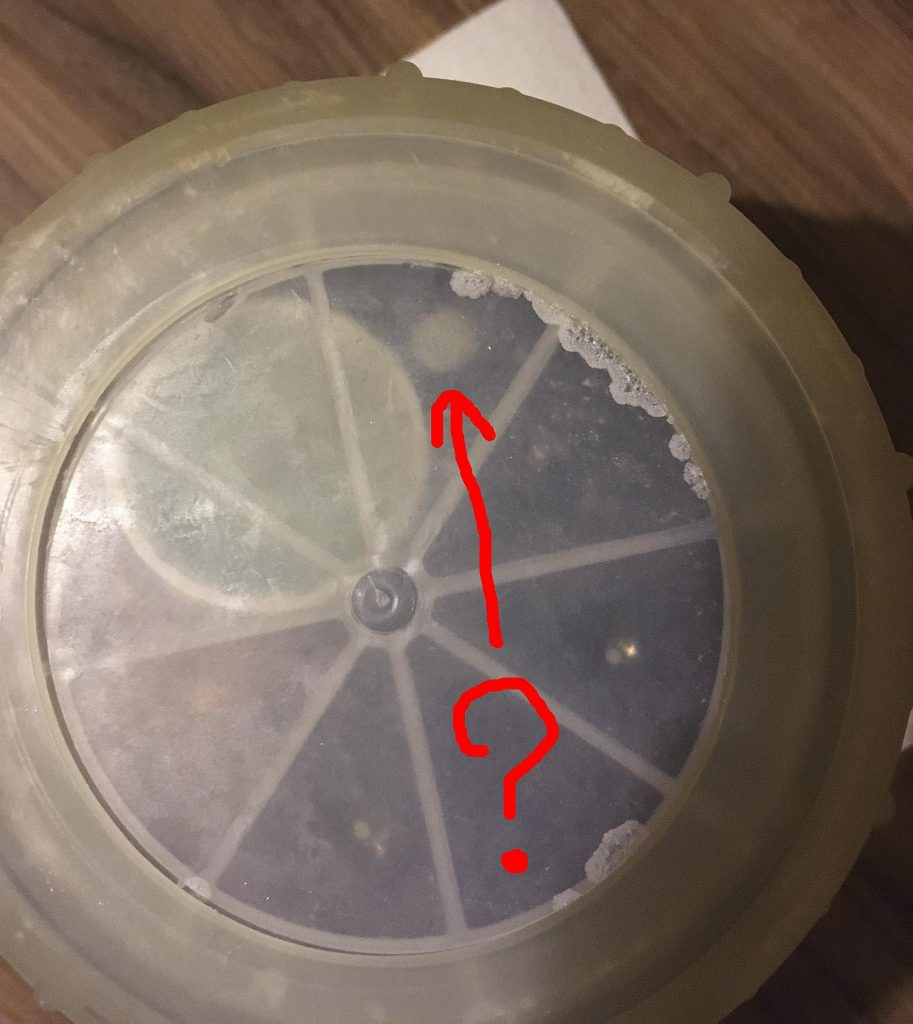 Is that mold? A bacteria colony?: Possible signs of life growing on top of the brine. Sept 26, 2016